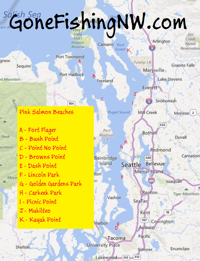 Pink Salmon Puget Sound Beach Map