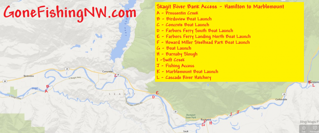 Pink Salmon Skagit River Bank Access - Hamilton to Marblemount