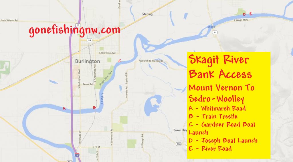 Pink Salmon Skagit River Bank Access - Mount Vernon to Sedro Woolley