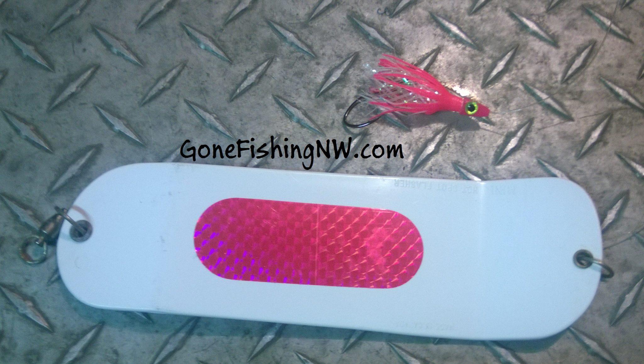 Pink Salmon Fishing Basics – Saltwater Trolling – Gone