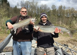 Results of a Cowlitz Steelhead Double