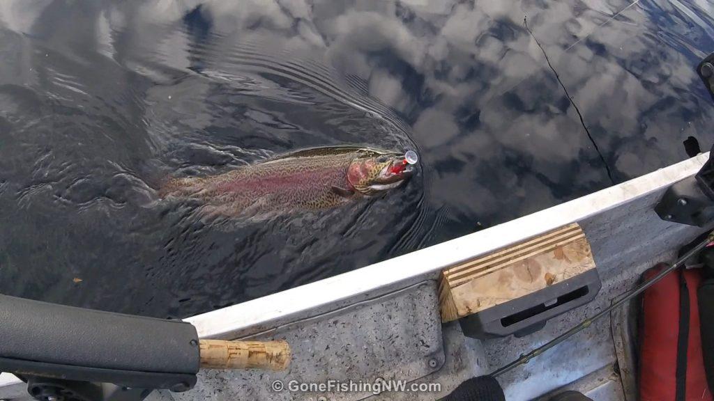 beaver-lake-rainbow