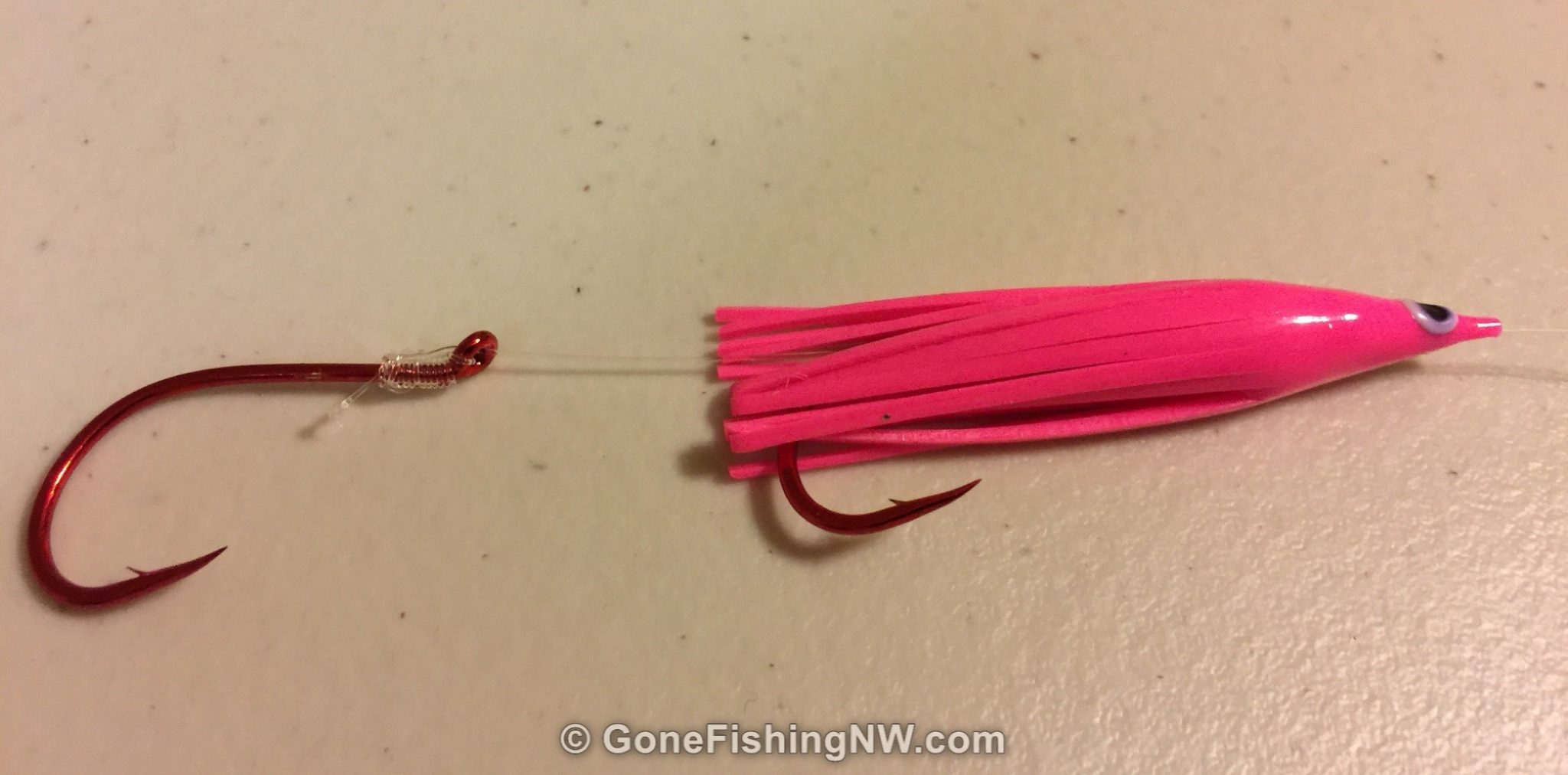 The Best Guide To Fish For Sockeye In Lakes – Gone Fishing Northwest